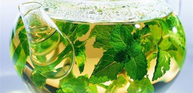 Bitkiler ve Sakinleştirici Etkileri 2