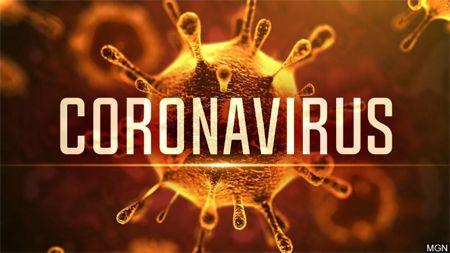 Türkiye'de Corona Virüsü - Yeni Koronavirüs Hastalığı (COVID-19) 1